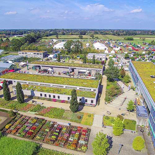 Florum Schleswig-Holstein